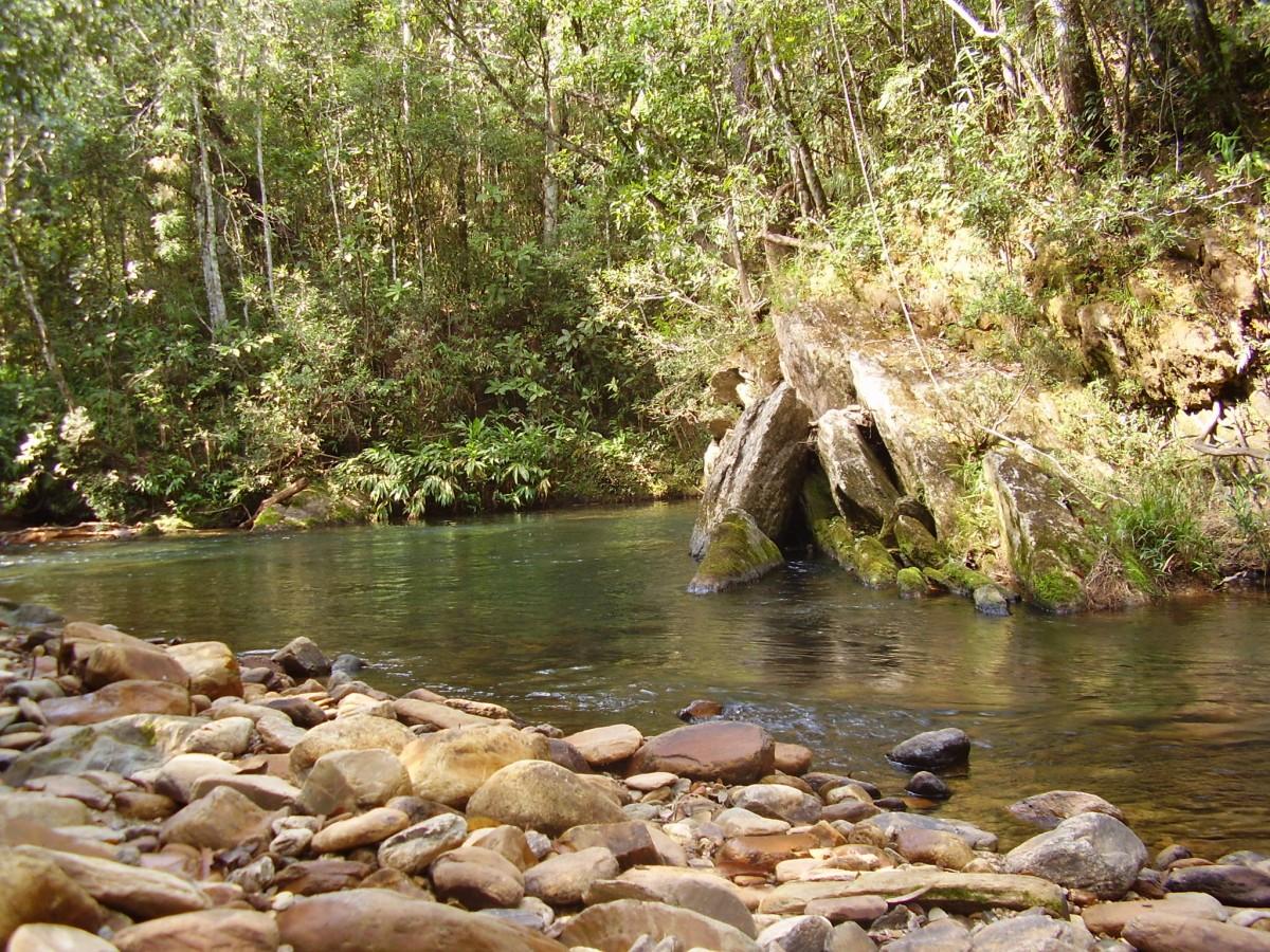 Câmara aprecia Projeto para ampliar a proteção das nascentes dos rios
