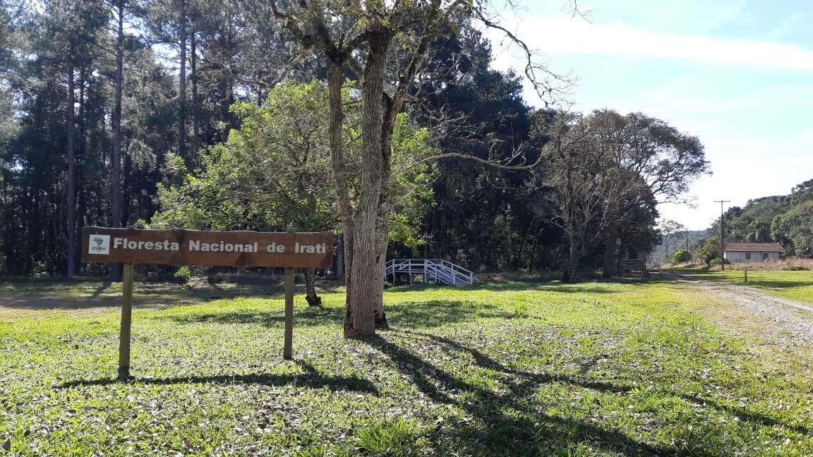 Floresta Nacional de Irati é qualificada para PPI do Governo Federal